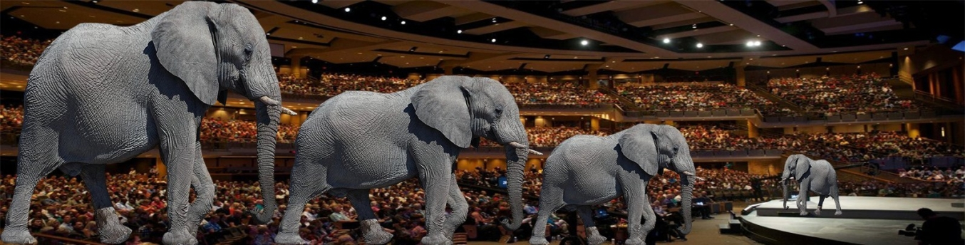 WC Elephant in the Room